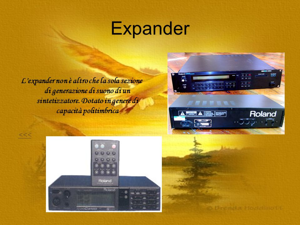 Expander L expander non è altro che la sola sezione di generazione di suono di un sintetizzatore. Dotato in genere di capacità politimbrica.