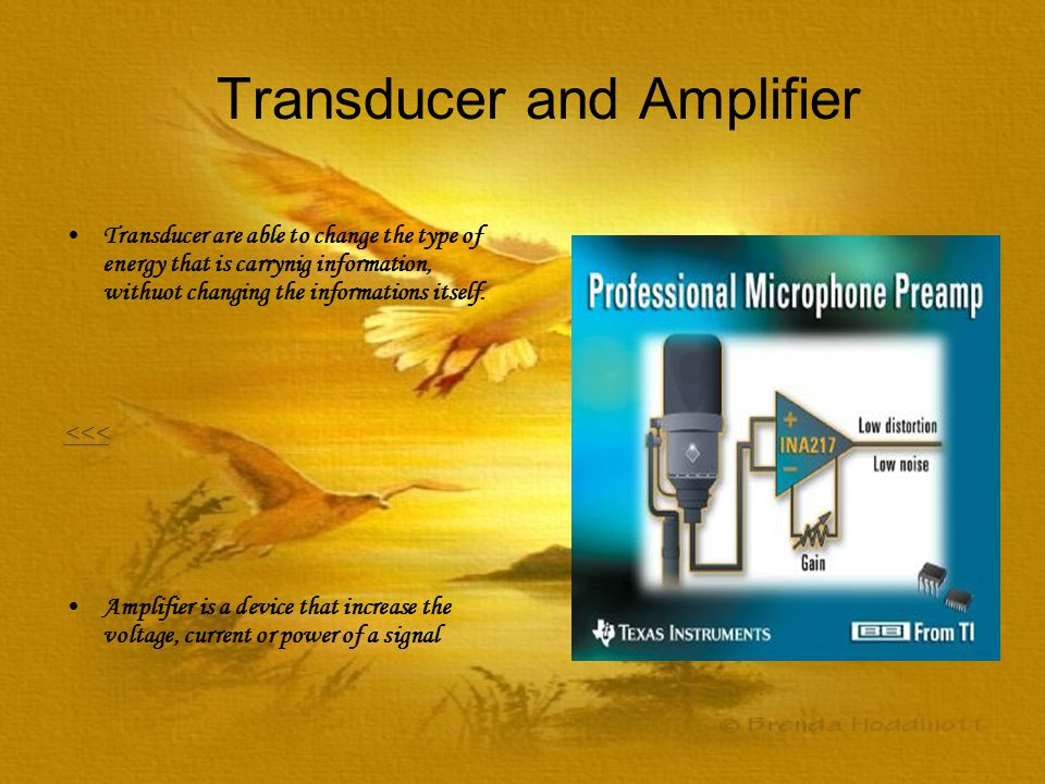 Transducer and Amplifier