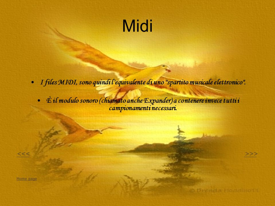 Midi I files MIDI, sono quindi l equivalente di uno spartito musicale elettronico .