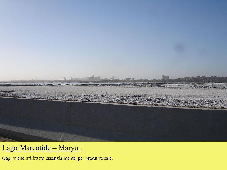 Lago Mareotide – Maryut: