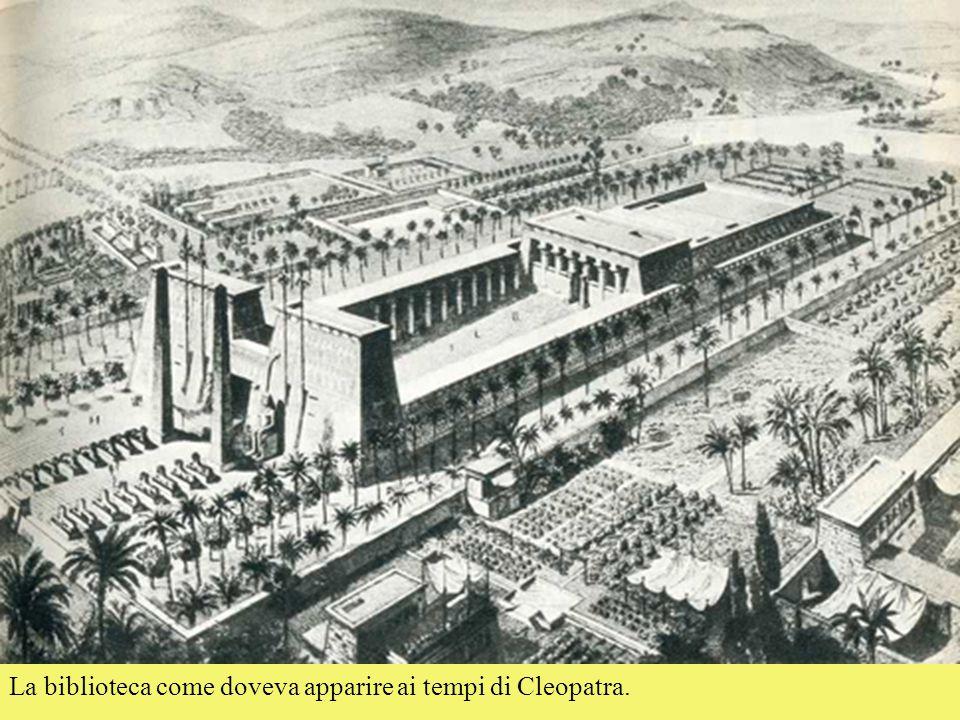 La biblioteca come doveva apparire ai tempi di Cleopatra.