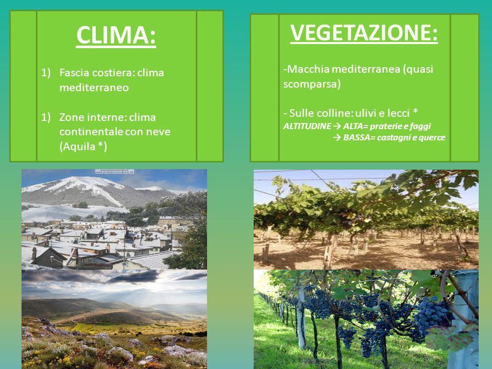 CLIMA: VEGETAZIONE: Fascia costiera: clima mediterraneo