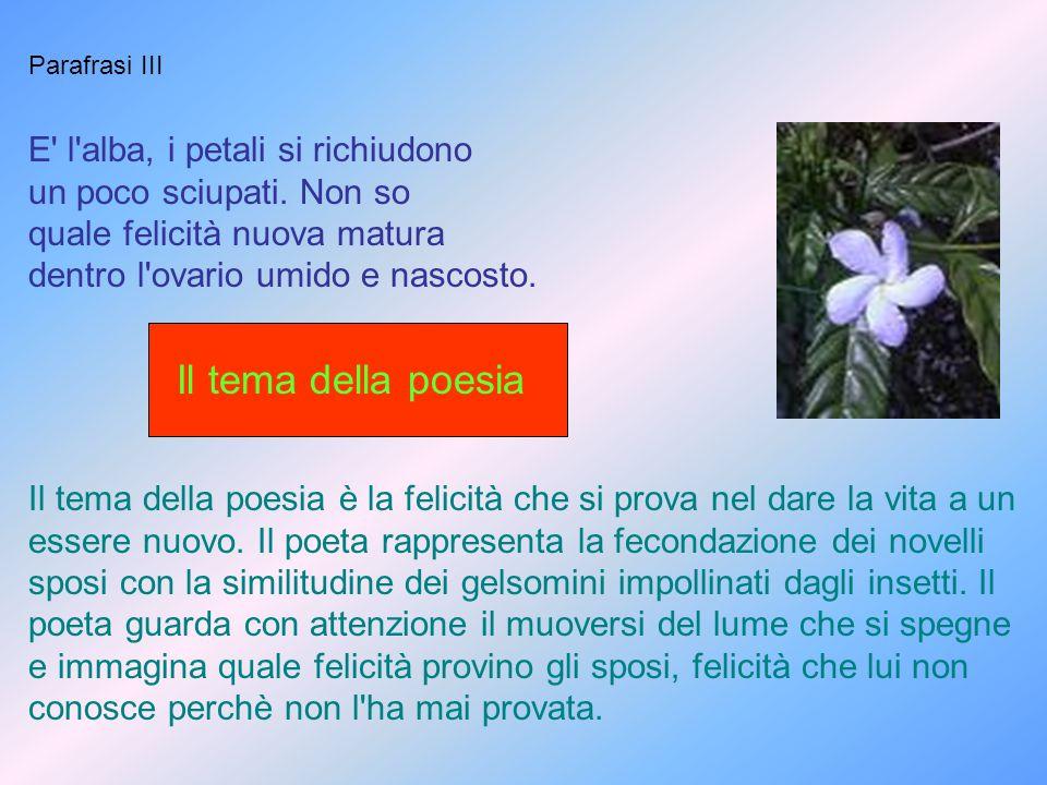 Il tema della poesia E l alba, i petali si richiudono