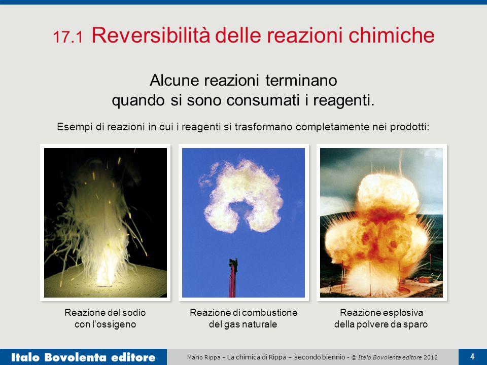 17.1 Reversibilità delle reazioni chimiche
