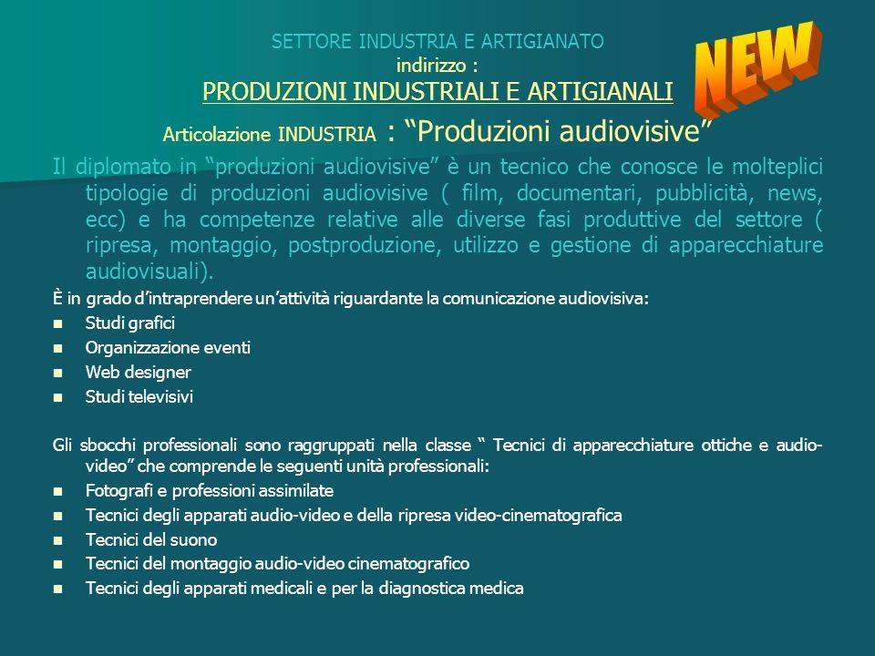 Articolazione INDUSTRIA : Produzioni audiovisive