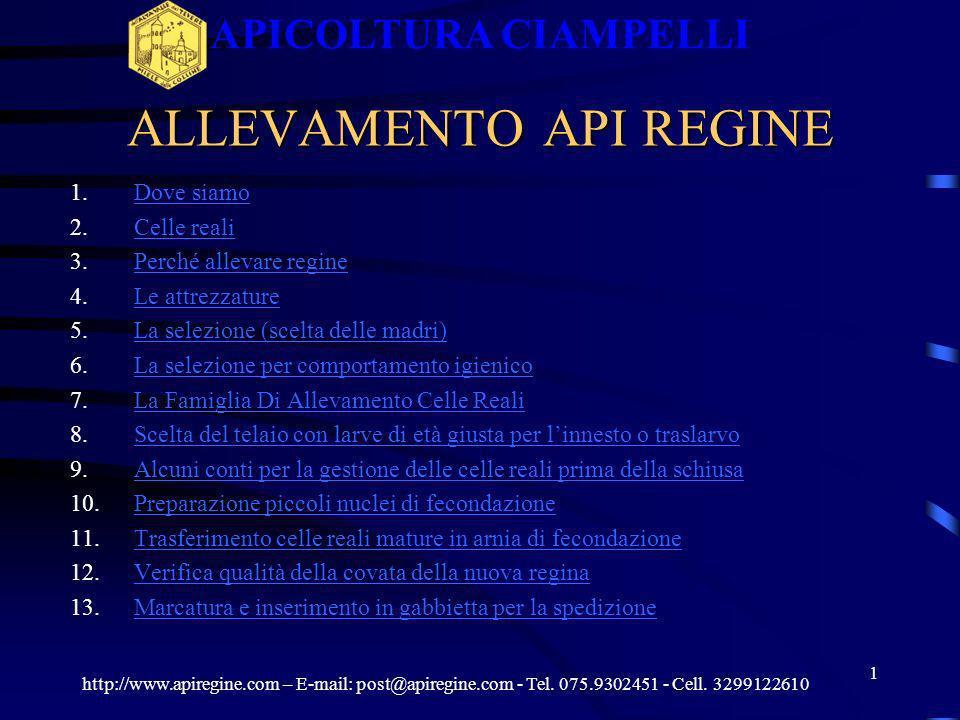 ALLEVAMENTO API REGINE