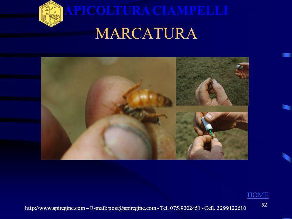 APICOLTURA CIAMPELLI MARCATURA HOME