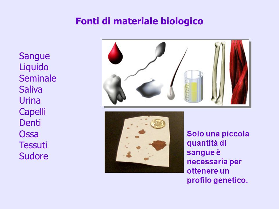 Fonti di materiale biologico