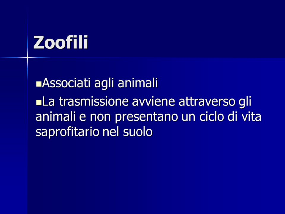 Zoofili Associati agli animali