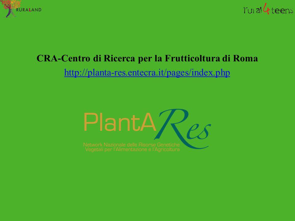CRA-Centro di Ricerca per la Frutticoltura di Roma http://planta-res