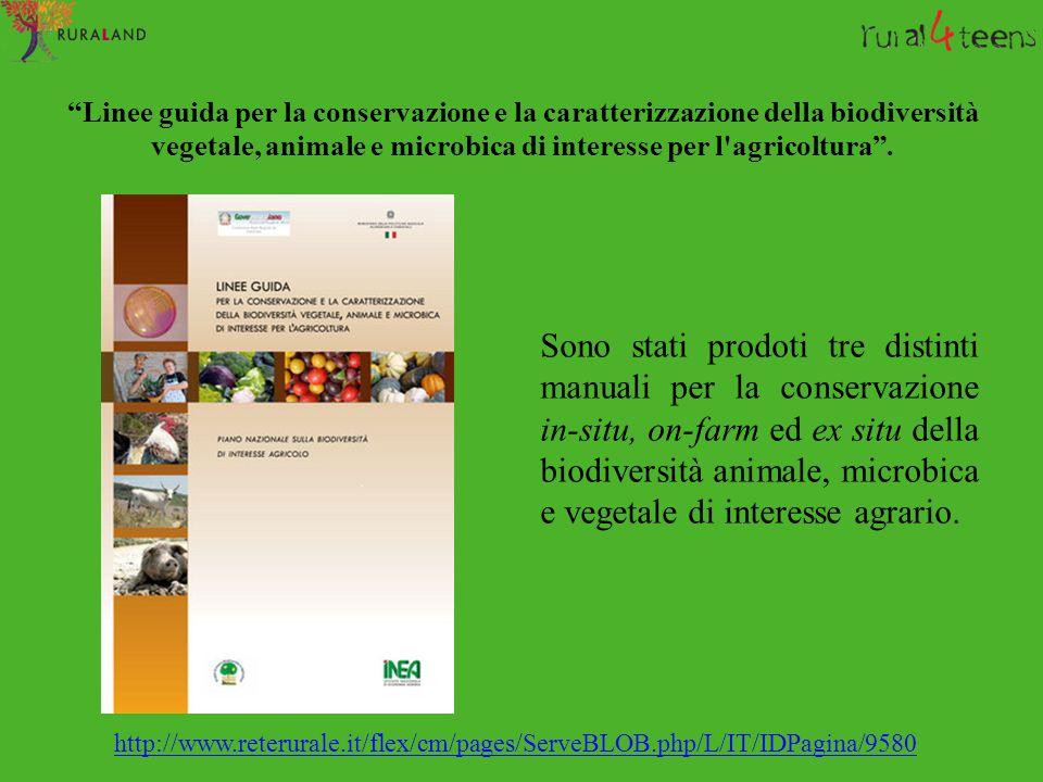 Linee guida per la conservazione e la caratterizzazione della biodiversità vegetale, animale e microbica di interesse per l agricoltura .