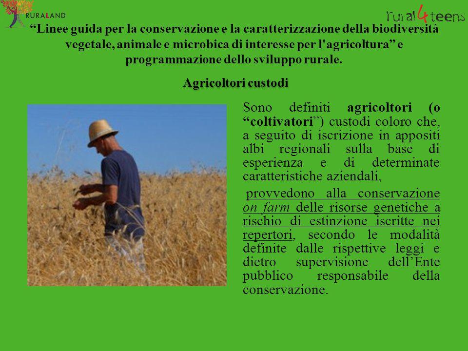 Linee guida per la conservazione e la caratterizzazione della biodiversità vegetale, animale e microbica di interesse per l agricoltura e programmazione dello sviluppo rurale.