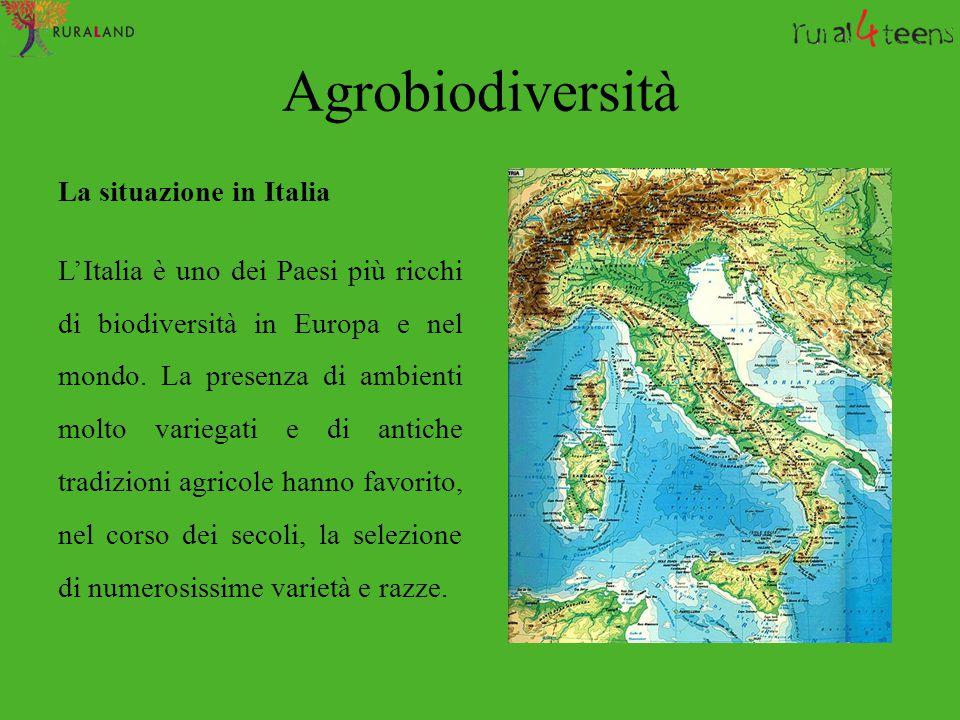 Agrobiodiversità La situazione in Italia