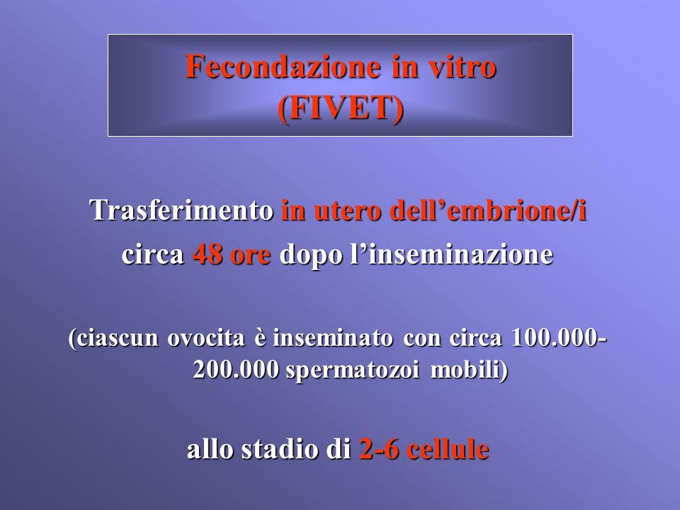 Fecondazione in vitro (FIVET)
