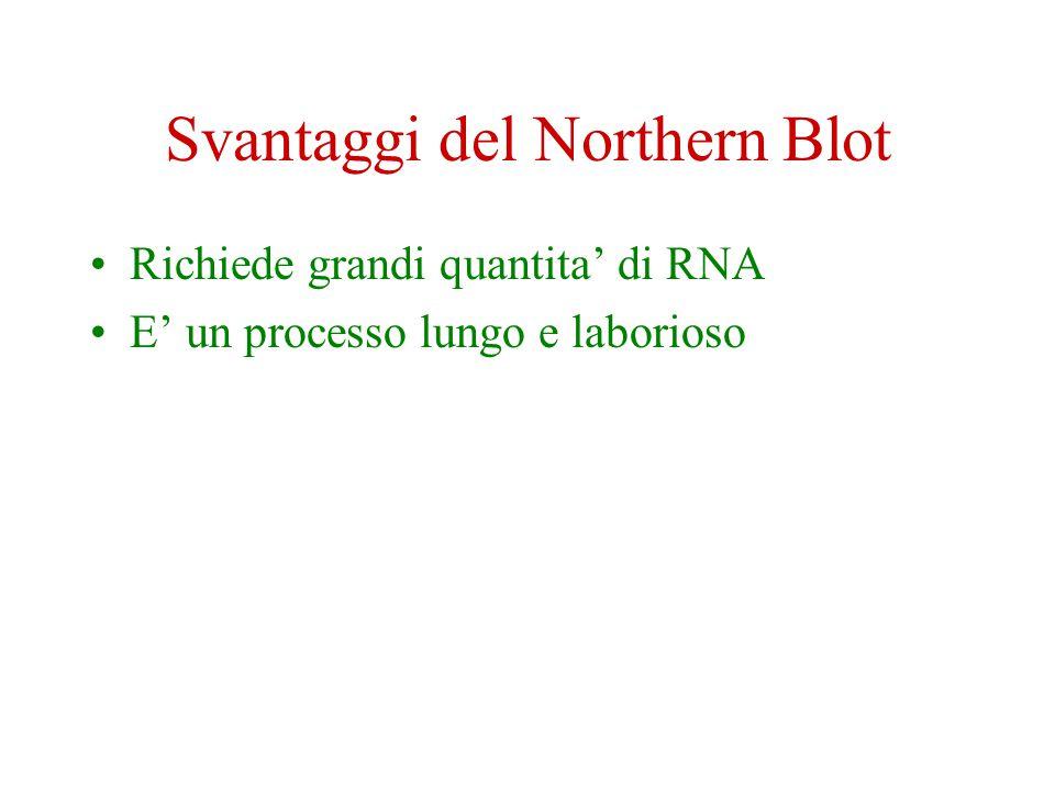 Svantaggi del Northern Blot