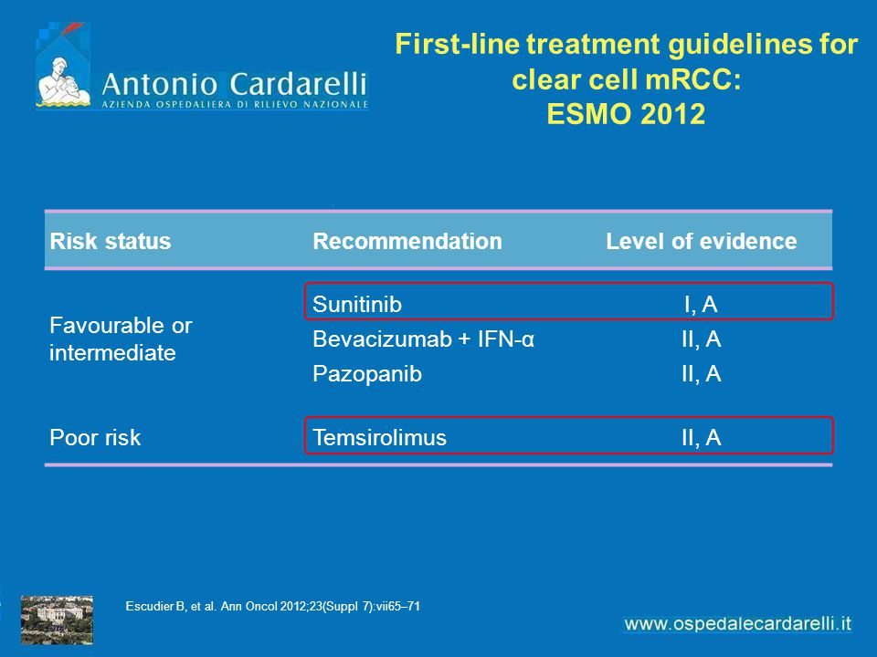 First-line treatment guidelines for clear cell mRCC: ESMO 2012