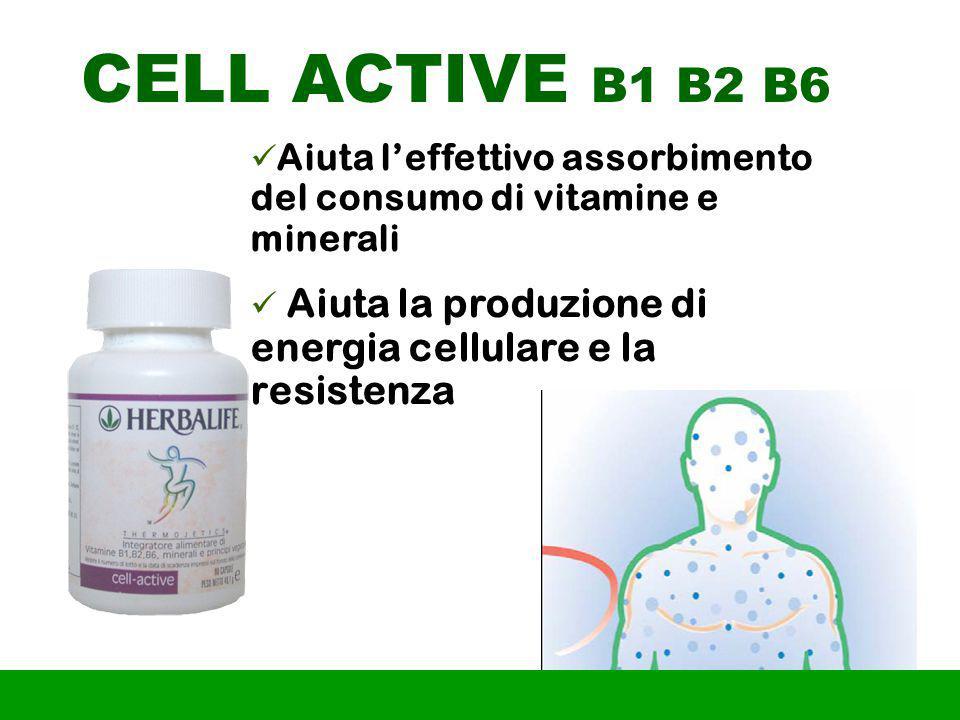 CELL ACTIVE B1 B2 B6 Aiuta l'effettivo assorbimento del consumo di vitamine e minerali.