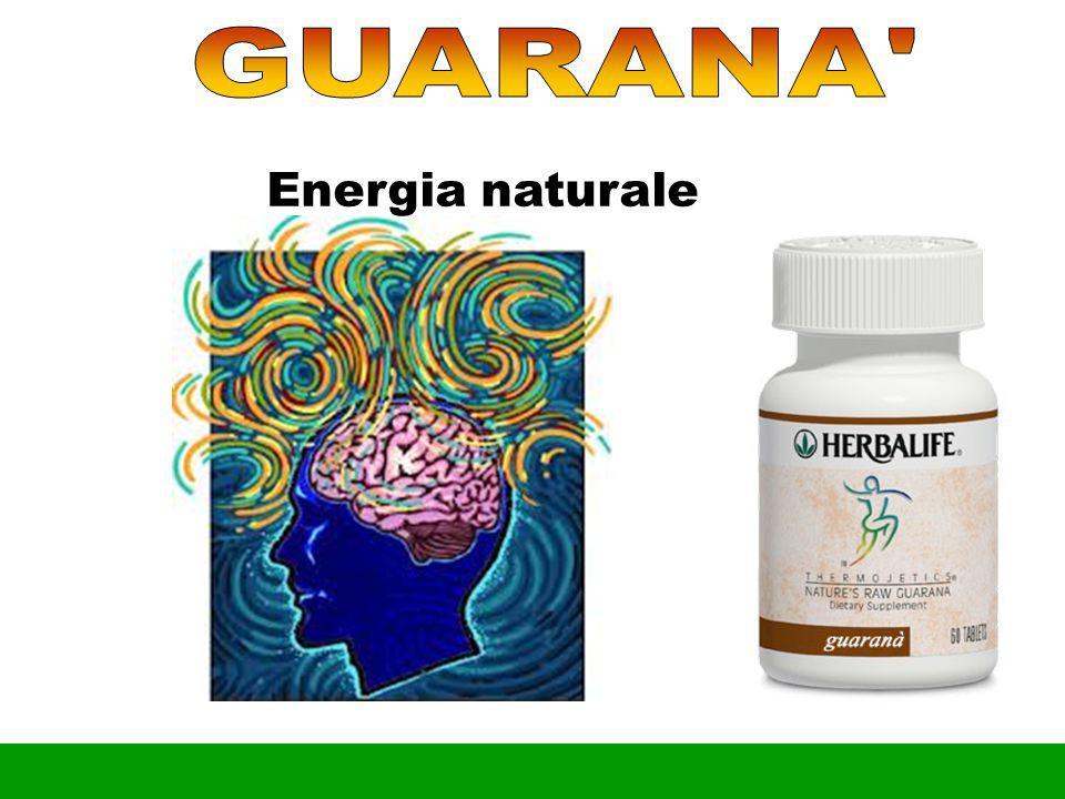 GUARANA Energia naturale •No Fumar Apagar Teléfonos Celulares Notas
