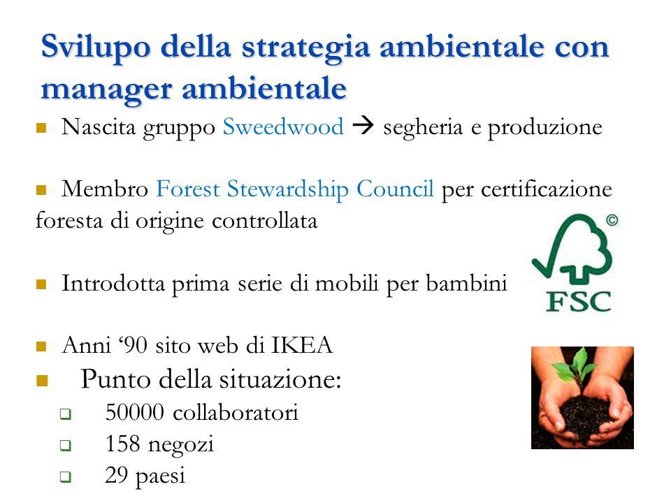 Svilupo della strategia ambientale con manager ambientale