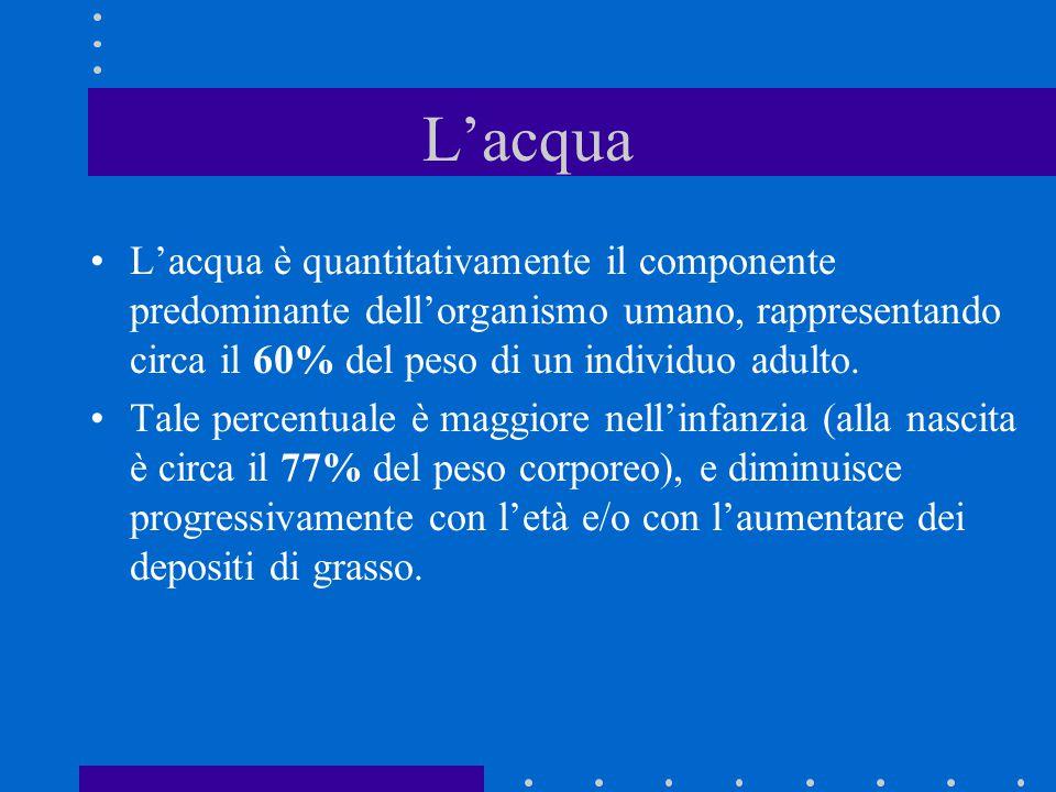 L'acqua L'acqua è quantitativamente il componente predominante dell'organismo umano, rappresentando circa il 60% del peso di un individuo adulto.