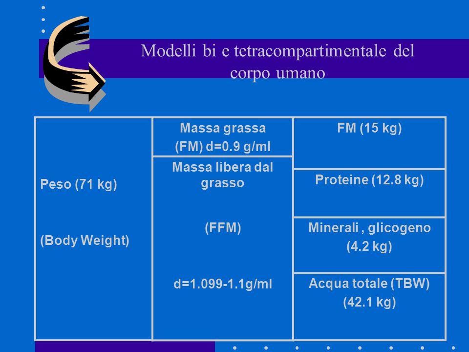Modelli bi e tetracompartimentale del corpo umano