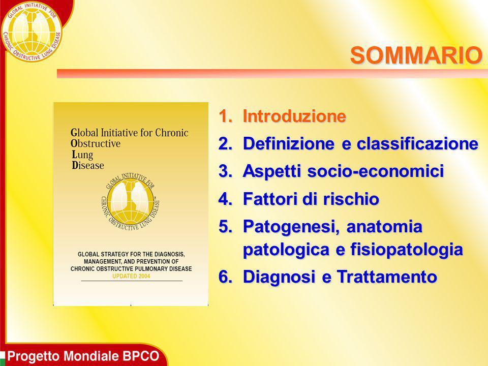 SOMMARIO Introduzione Definizione e classificazione