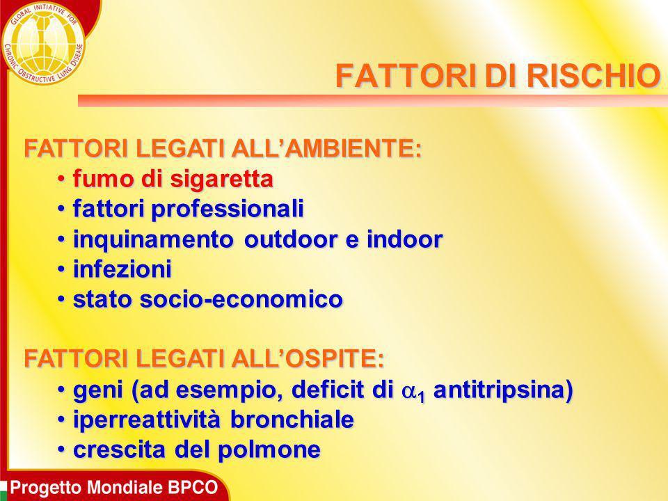 FATTORI DI RISCHIO FATTORI LEGATI ALL'AMBIENTE: fumo di sigaretta