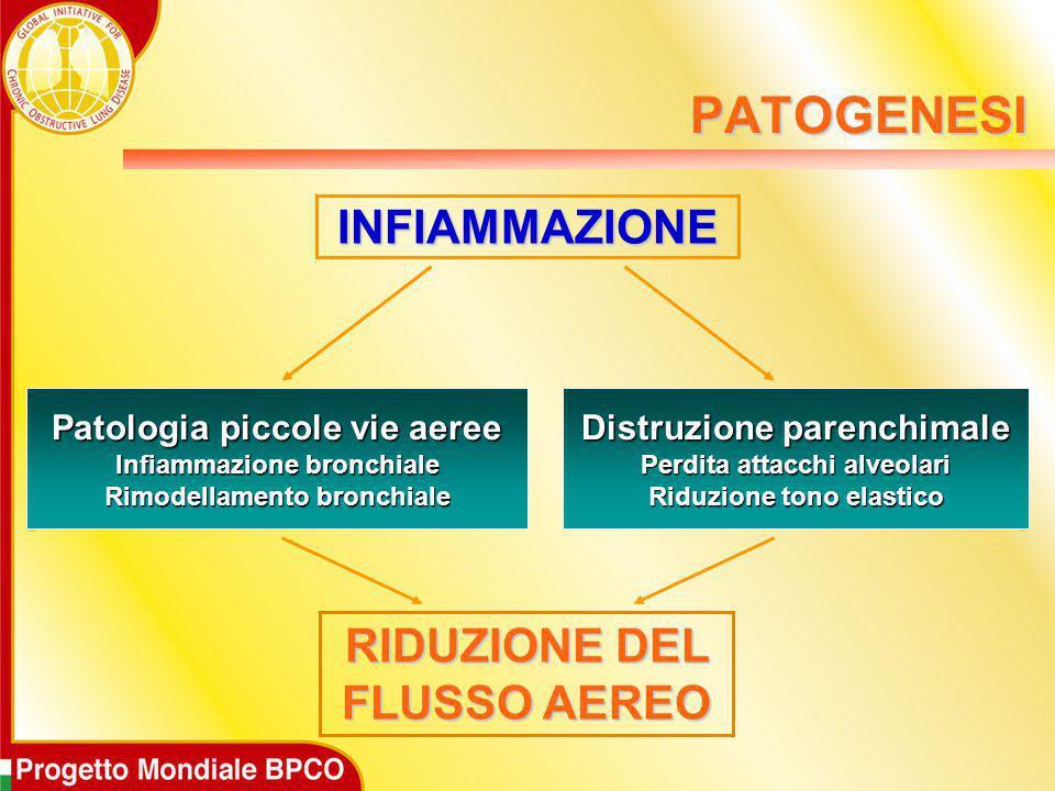 PATOGENESI INFIAMMAZIONE RIDUZIONE DEL FLUSSO AEREO