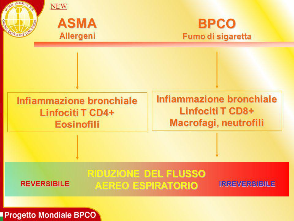 ASMA BPCO Infiammazione bronchiale Infiammazione bronchiale