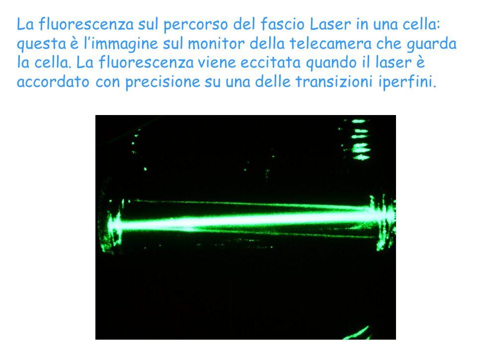 La fluorescenza sul percorso del fascio Laser in una cella: questa è l'immagine sul monitor della telecamera che guarda la cella.