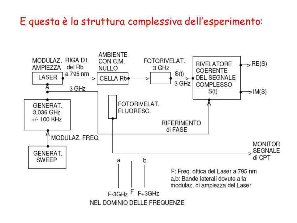 E questa è la struttura complessiva dell'esperimento: