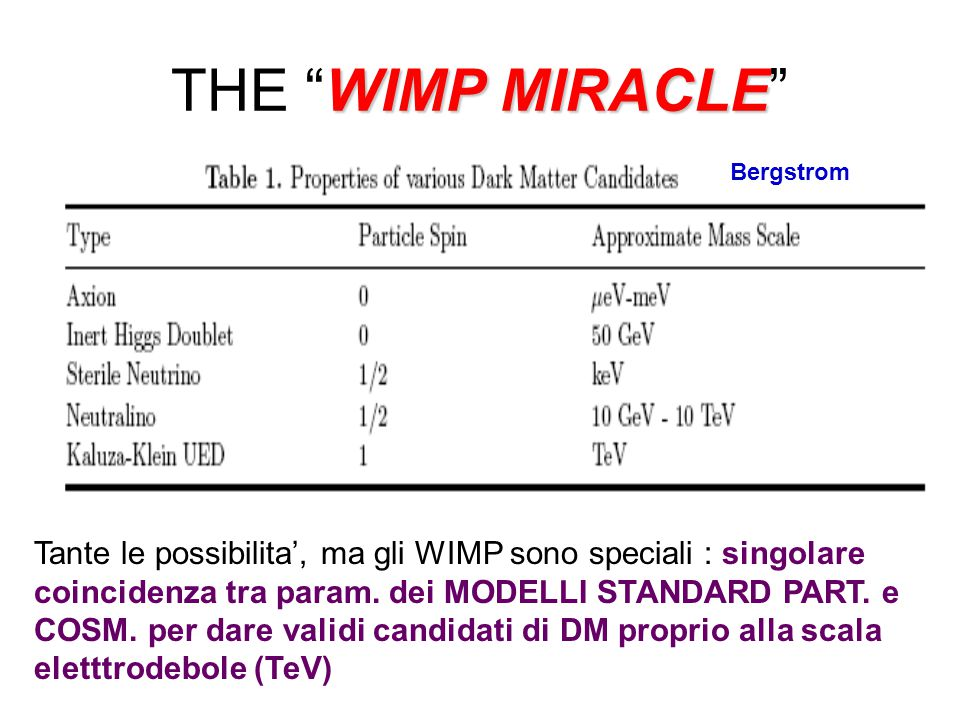 THE WIMP MIRACLE Bergstrom.