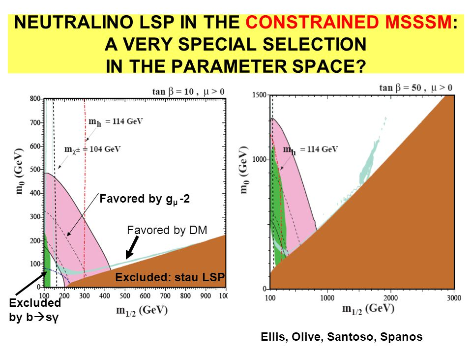 NEUTRALINO LSP IN THE CONSTRAINED MSSSM: A VERY SPECIAL SELECTION IN THE PARAMETER SPACE