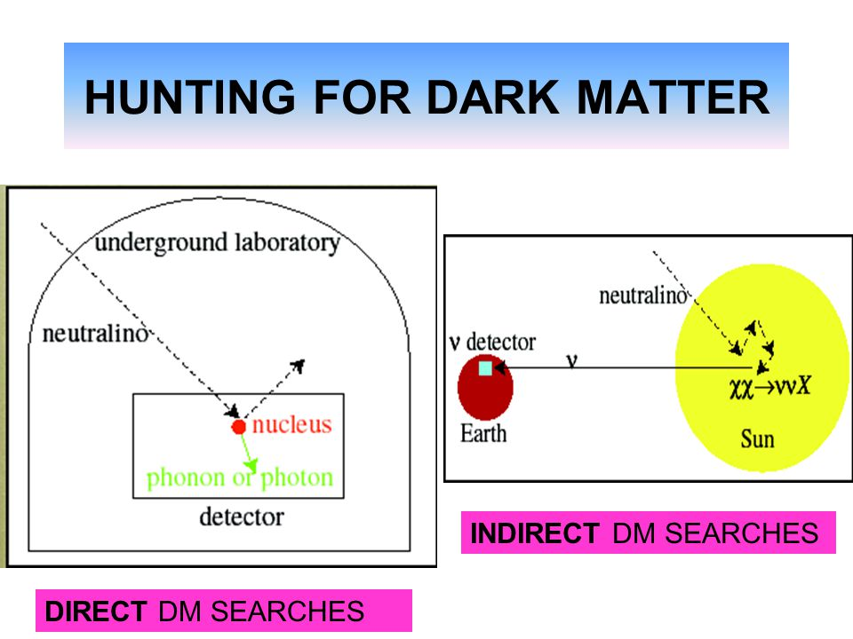 HUNTING FOR DARK MATTER