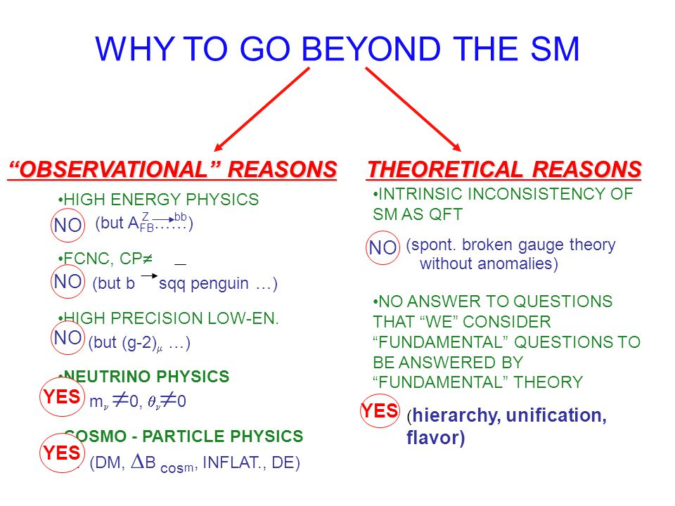 WHY TO GO BEYOND THE SM OBSERVATIONAL REASONS THEORETICAL REASONS NO