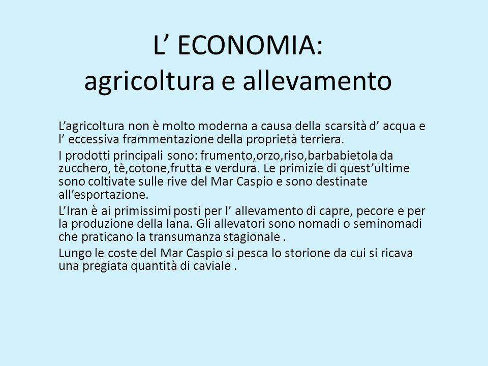 L' ECONOMIA: agricoltura e allevamento