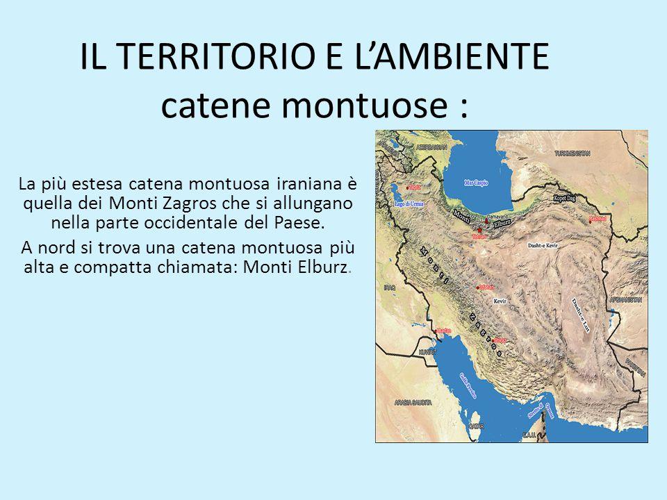 IL TERRITORIO E L'AMBIENTE catene montuose :