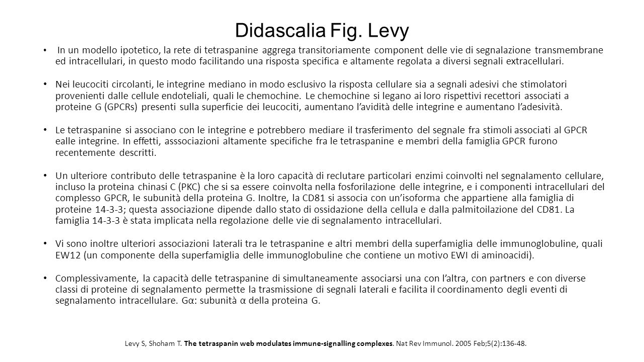 Didascalia Fig. Levy