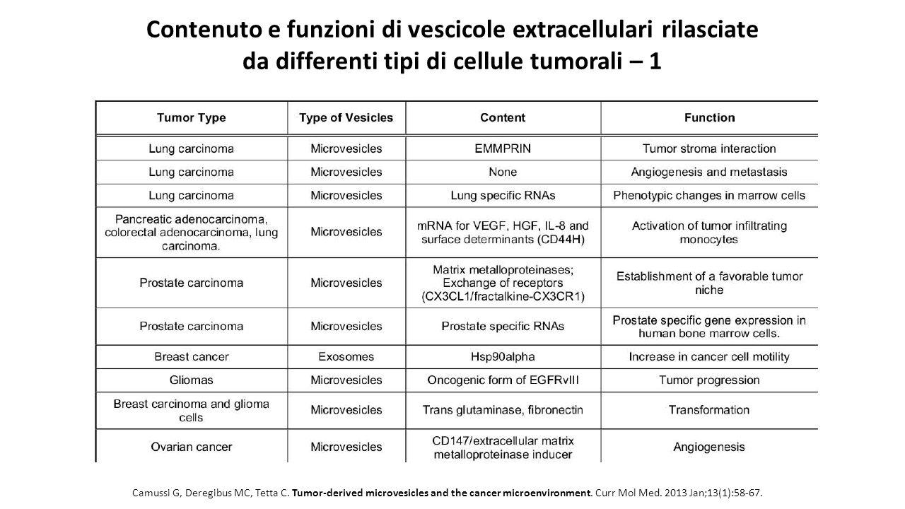Contenuto e funzioni di vescicole extracellulari rilasciate da differenti tipi di cellule tumorali – 1
