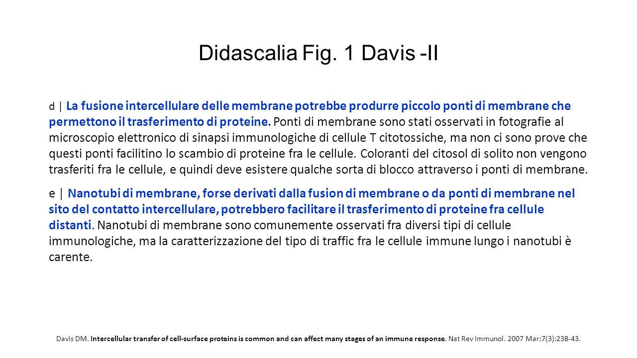 Didascalia Fig. 1 Davis -II