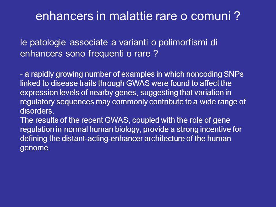 enhancers in malattie rare o comuni