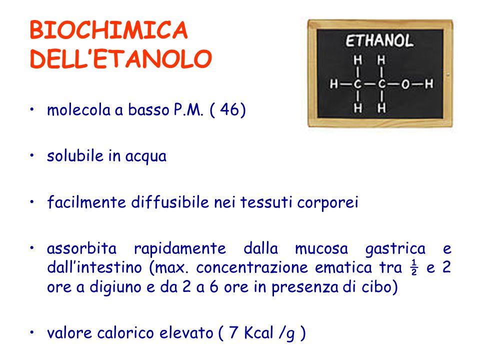 BIOCHIMICA DELL'ETANOLO