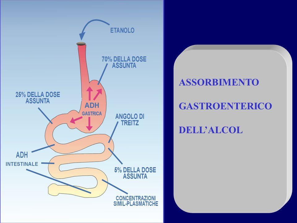 ASSORBIMENTO GASTROENTERICO DELL'ALCOL