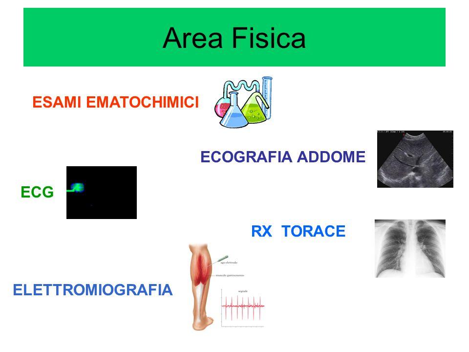 Area Fisica ESAMI EMATOCHIMICI ECOGRAFIA ADDOME ECG RX TORACE
