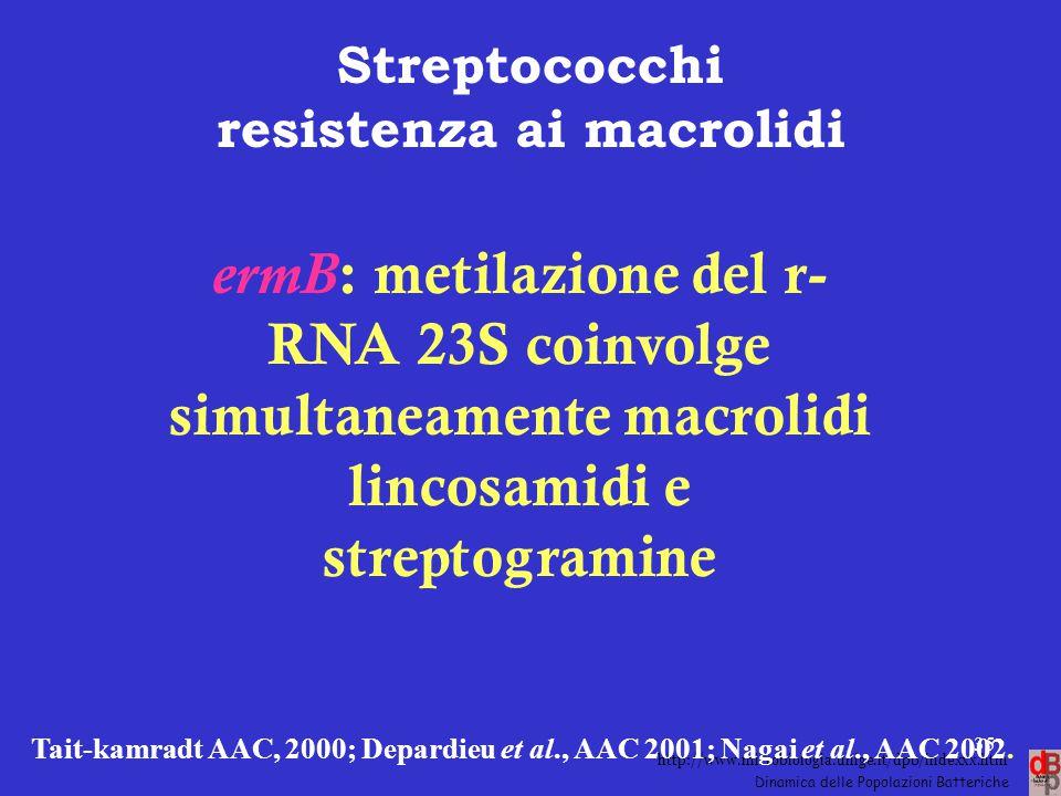 Streptococchi resistenza ai macrolidi