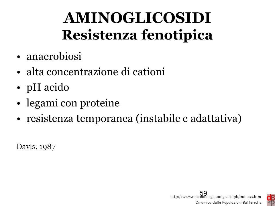 AMINOGLICOSIDI Resistenza fenotipica