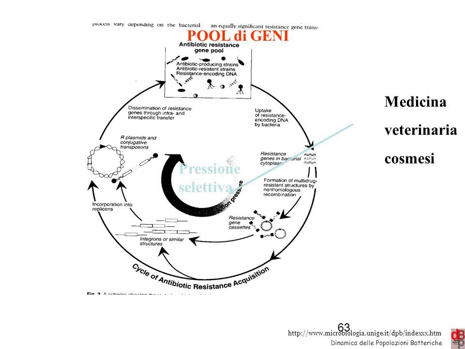 POOL di GENI Medicina veterinaria cosmesi Pressione selettiva 63 63