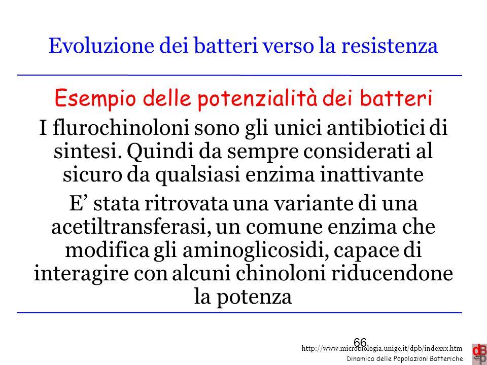 Evoluzione dei batteri verso la resistenza