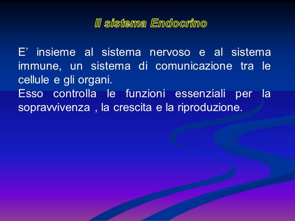 Il sistema Endocrino E' insieme al sistema nervoso e al sistema immune, un sistema di comunicazione tra le cellule e gli organi.
