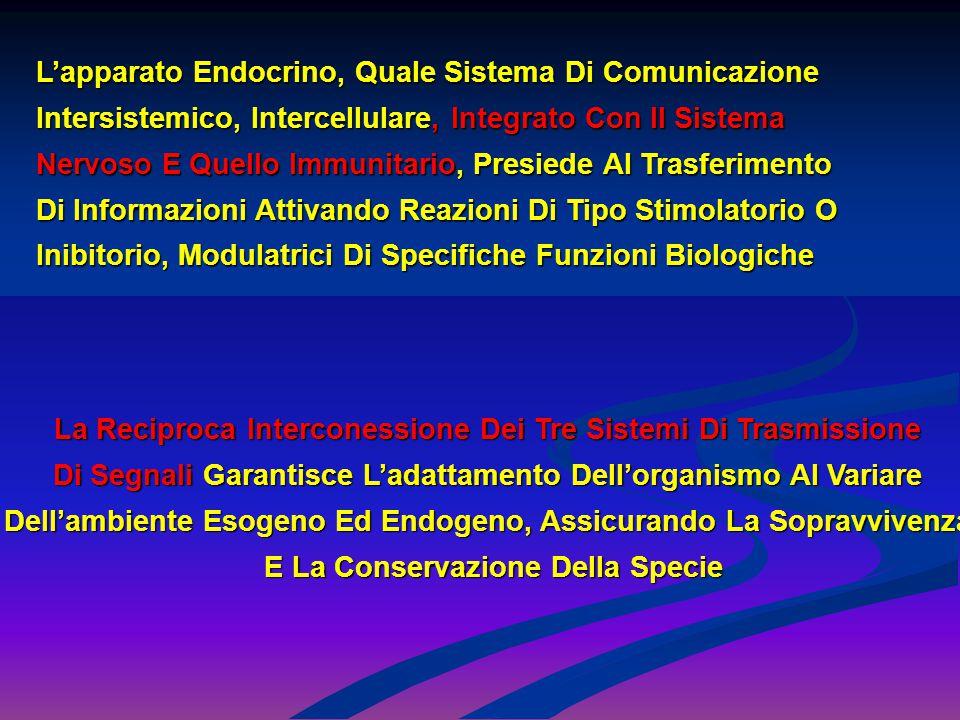 L'apparato Endocrino, Quale Sistema Di Comunicazione
